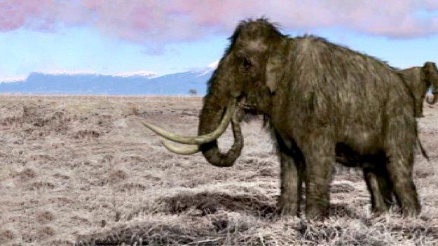 Extinct - Episode 1 - All 4